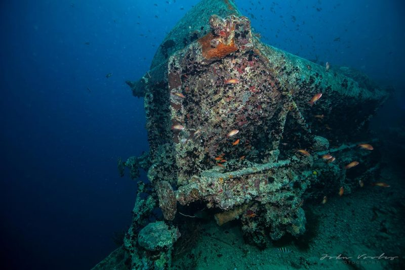 Red sea wreck diving
